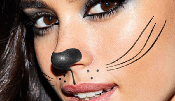 Easy cat face makeup